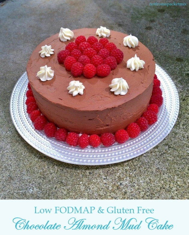 Chocolate Almond Mud Cake - Low FODMAP and Gluten Free