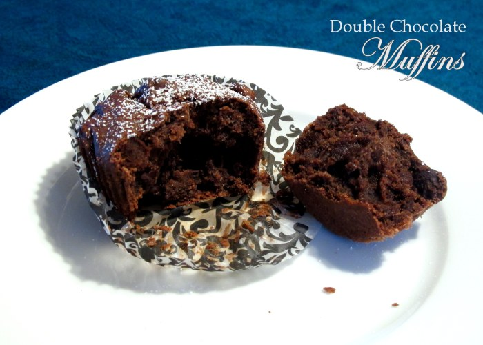 Double Chocolate Muffins - Fructose Friendly & Gluten Free