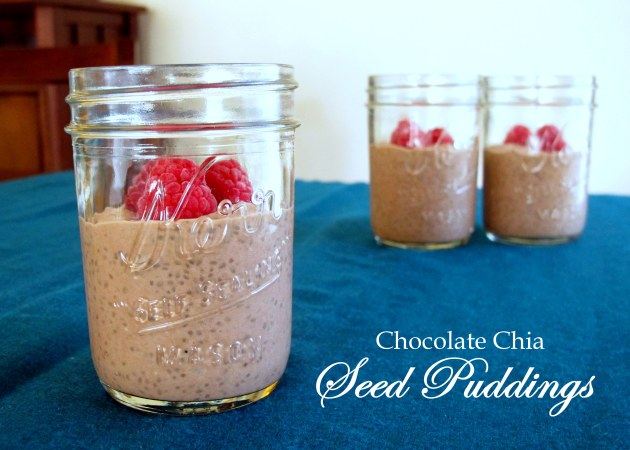 Chocolate Chia Seed Puddings - Low FODMAP, Fructose Friendly and Gluten Free