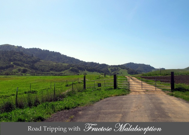 Along the Petaluma-Point Reyes Rd.