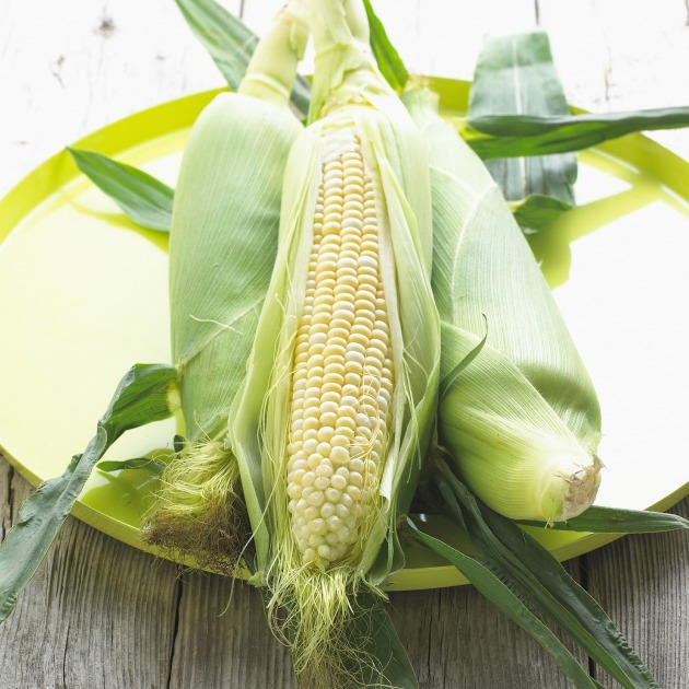 The FODMAP content of different varieties of corn/maize and