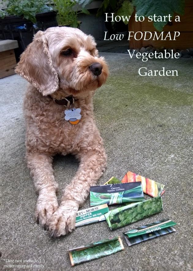 Fructose Friendly Veggie Garden